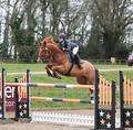 Triple Clear for Donna Callaghan - Equitop Myoplast Senior Foxhunter Second Round at Bicton Arena