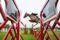 Harriet Nuttall on high during Hickstead's Ladies' Day