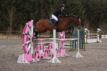 Alana Hood secures top spot in the NAF Five Star Silver League Qualifier at the Cabin Equestrian Centre