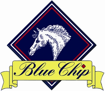 Blue Chip Feed Balancer Pony Newcomers Second Round at Crofton Manor Equestrian Centre