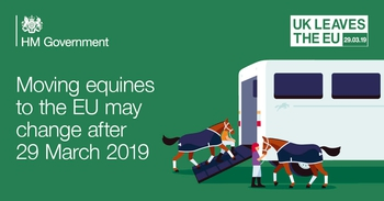 Moving equines to the EU may change after the 29 March 2019