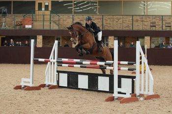 Jane Ault & Triomf L are Triumphant in Dodson & Horrell 1.10m National Amateur Second Round at Highfield Equestrian at Howe