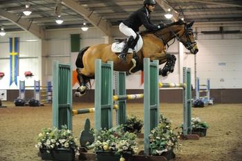 Addington Manor Equestrian Centre Winter Premier Show