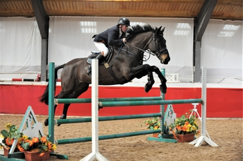 Allan Birch Claims his Second Qualifying Ticket in the SEIB Winter Novice Qualifier at SouthView Equestrian Centre