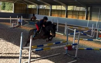 2 Day Adult Showjumping Camp - 'Up Your Game'
