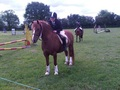 British Showjumping Club Show with Chiltern & Thames Rider Qualifiers at Caddington RC