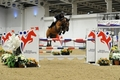 Kerry Brennan and Wellington M win the Aintree Indoor Championships Grand Prix