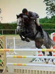 Derek Morton lands the Nupafeed Supplements Senior Discovery Second Round at Field House Equestrian Centre