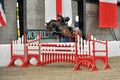 Aberdeenshire's Holly Miller Takes Championship Qualification in SEIB Winter Novice Qualifier at Morris Equestrian Centre
