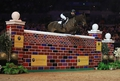 Liverpool International's Equitop Myoplast Puissance  a Great Crowd Pleaser