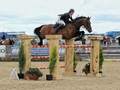 Mark Edwards on flying form at the Royal Highland Show after win in the International Stairway