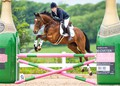 Paige Smart and Jive Master II are leading the RoR British Showjumping Club League