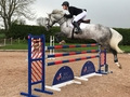 Robert Murphy scoops the win in the Equitop Myoplast Senior Foxhunter Second Round at REC Arenas