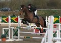 Congratulations to Jo-Anna Tesh, Worcester for gaining her NAF British Showjumping 3 Star Performance Award.
