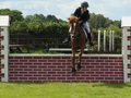 British Showjumping Report from NSJC - 17 June 2012