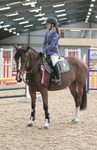 New British Showjumping Centre in Cambridgeshire