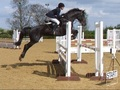 Congratulations to Kara Halliday for gaining her NAF British Showjumping 1 Star Performance