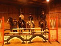 British Showjumping training at Oaklands College, Herts - take two!
