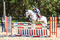 Albert Voorn Senior Showjumping Clinics @ Crofton Manor