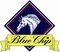 Blue Chip Pony Newcomers Second Rounds Start at Weston Lawns Equitation