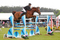 Emma-Jo Slater Secures Speedi-Beet HOYS Grade C Qualifier Win at Hertfordshire County Show