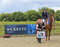 Helen Mitchell scoops the KBIS Insurance Senior British Novice Second Round win at Beacons Equestrian Centre