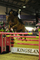ALEXANDERS HORSEBOXES BRITISH SHOWJUMPING SCOPE FESTIVAL - WEDNESDAY