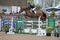 Phillip Miller and Unbelievable Lady storm to victory in the New Forest