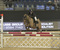 Major Pony Show Jumping at Liverpool International Horse Show